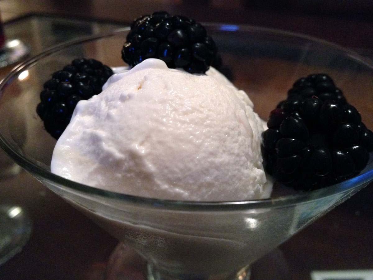 Tart Vanilla Frozen Yogurt | Hugs 'n Kitchen